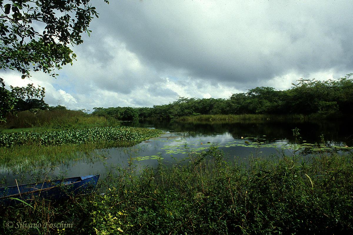 Belize \'90-008