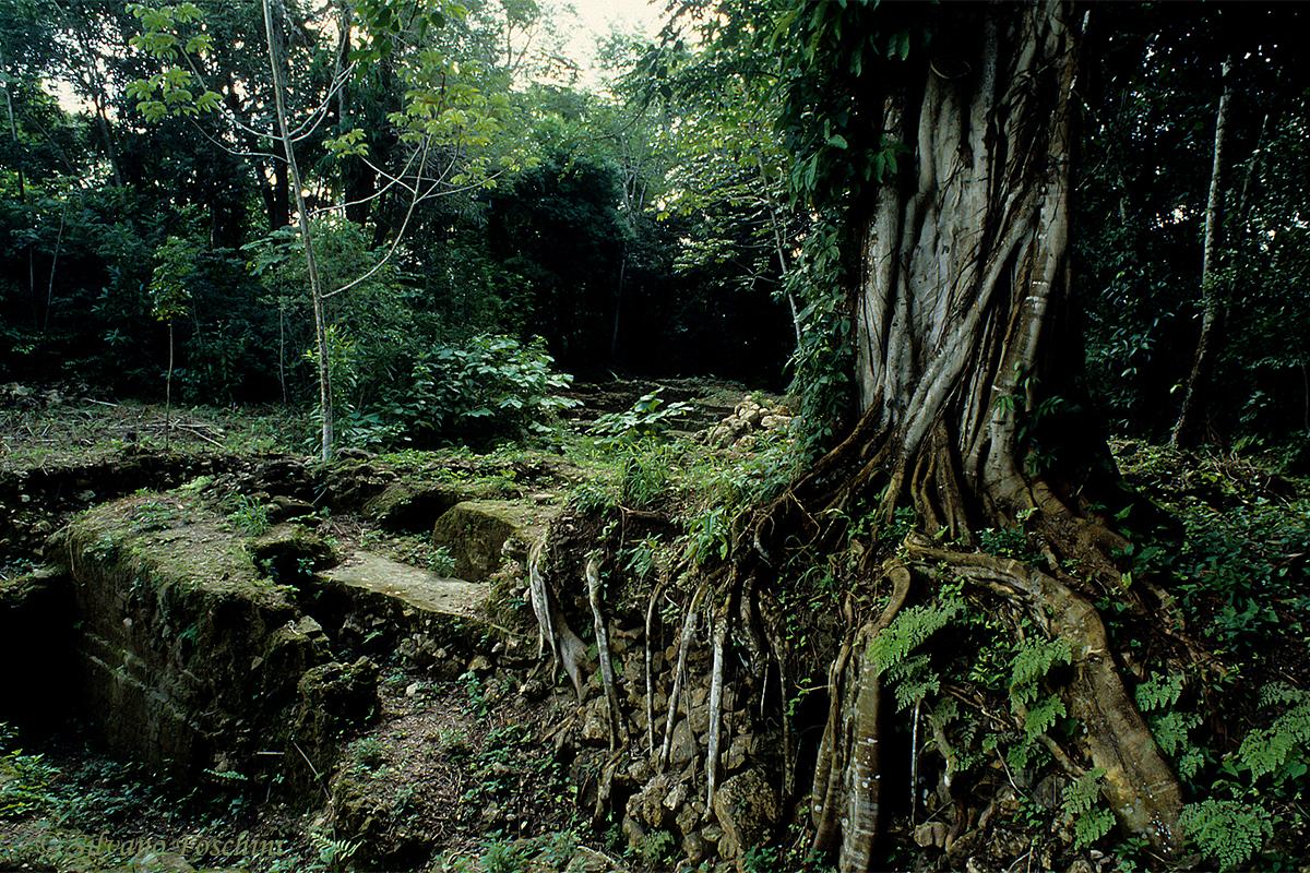 Belize \'90-011