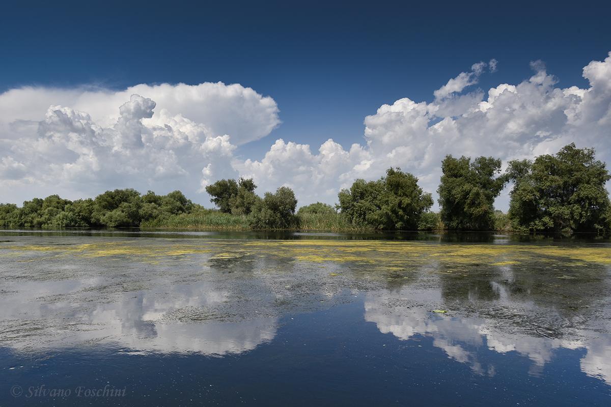 Delta del Danubio 001
