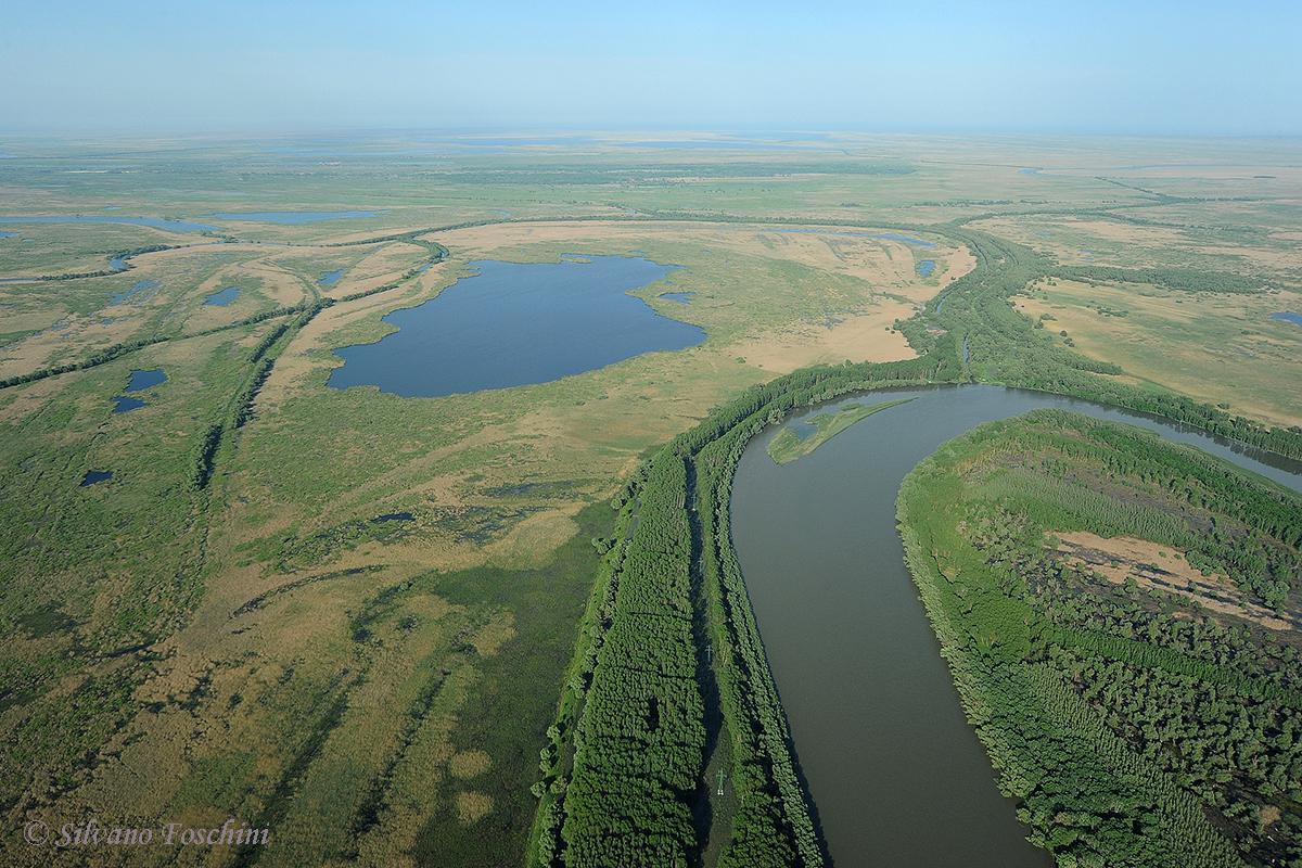 Delta del Danubio 004