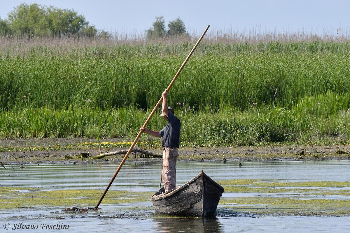 Delta del Danubio 008