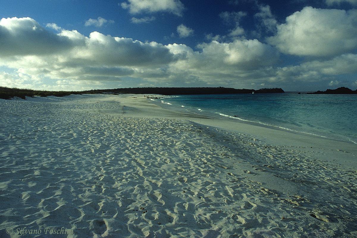 Galapagos \'85-013