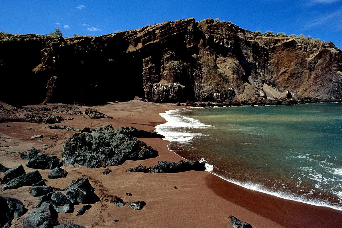Galapagos \'85-031